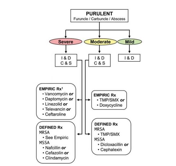 皮下膿瘍の抗菌薬